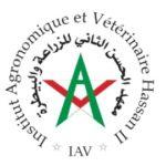 IAV Hassan II
